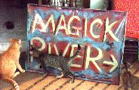 Mouse the Cat moves to Magick River but Underfoot decides to stay in Ampang! (pic by Antares)